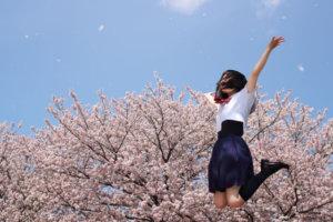 合格,春,桜